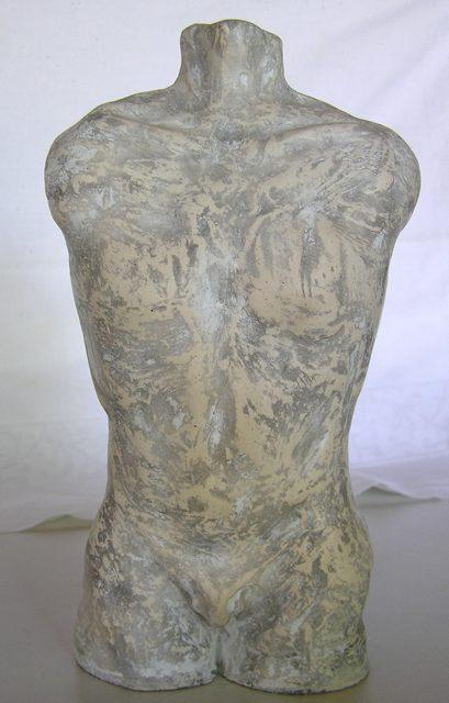 Torso (front)
