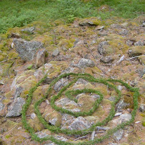 Spiral woven cedar garland