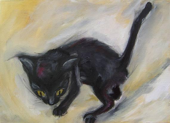 Little Black Cat2