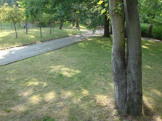 Gemeindepark 7June11