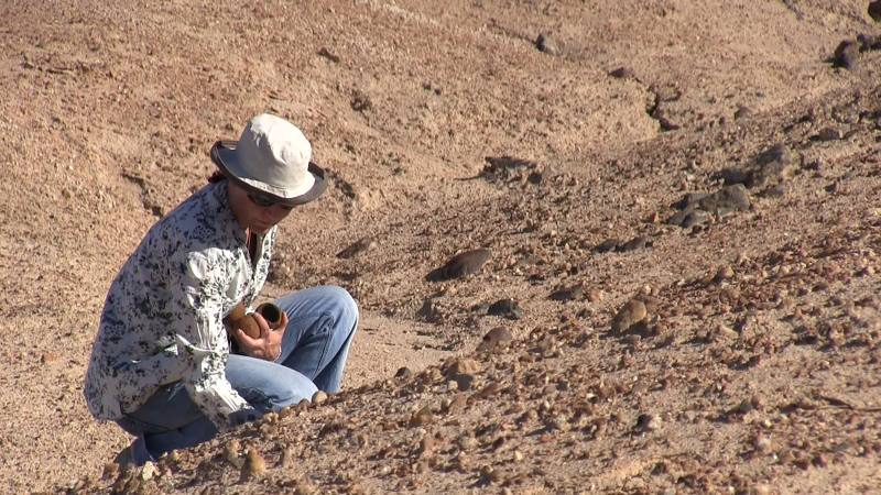 Working in the Moon valley, Namib Desert