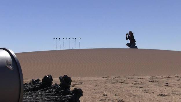 Planting black 'roses' in the Namib Desert