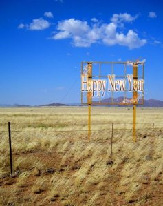 Happy New Year Namib © Imke Rust