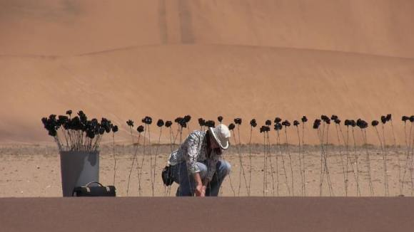 Me busy installing the 99 black roses (made out of barbed wire and rubbish bags) in the Namib desert for a temporary site-specific installation.