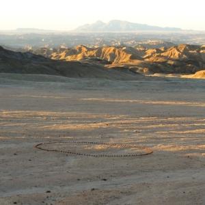 Dung Ball Circle 2012
