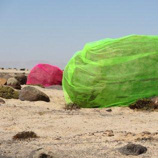 Toxic Rocks 2012