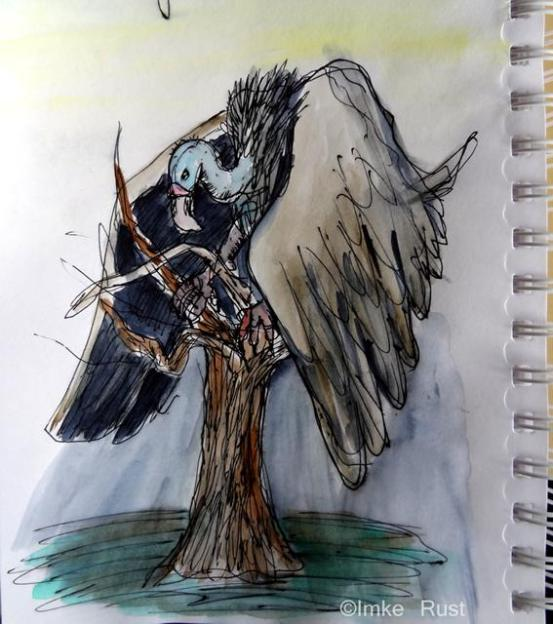 sketch, dark bird, vulture