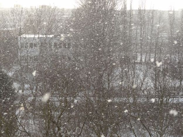 View from my studio - it is snowing...