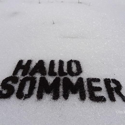 Hallo Sommer (Dark soil on snow) © Imke Rust