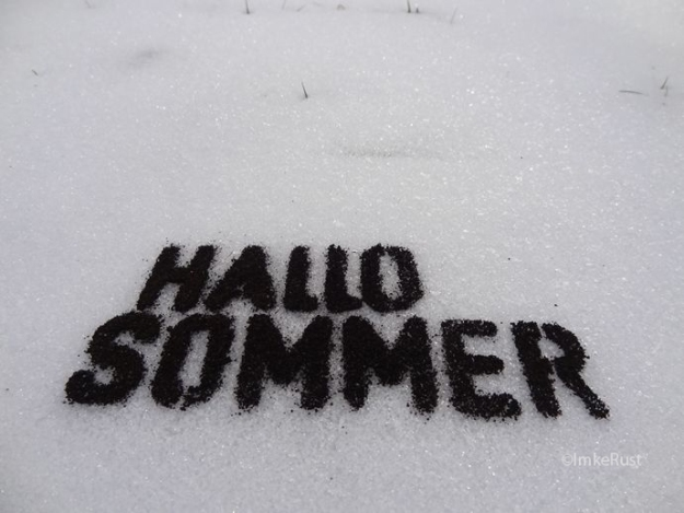 Hallo Sommer (Dark soil on snow) © Imke Rust
