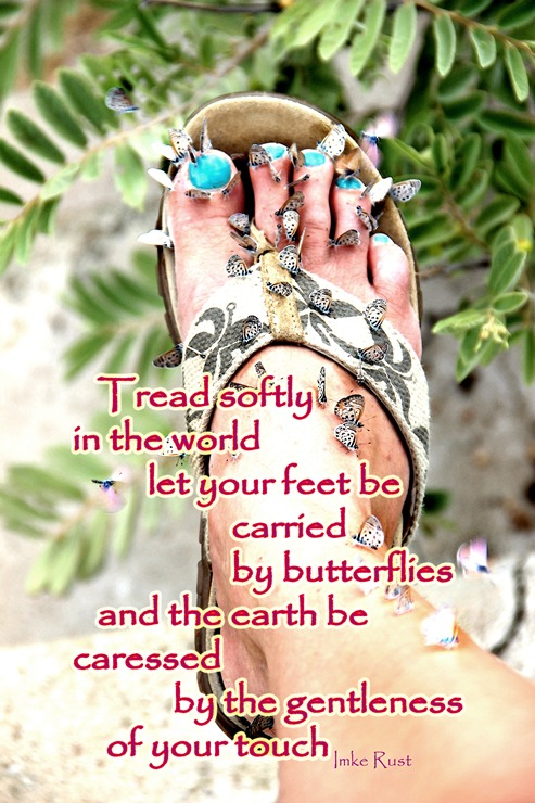 Tread Softly (Text and Image by Imke Rust ©)