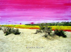 Toxic Flow Hand-coloured photo of the Namib Desert Photo, Acrylic 15 x 20cm