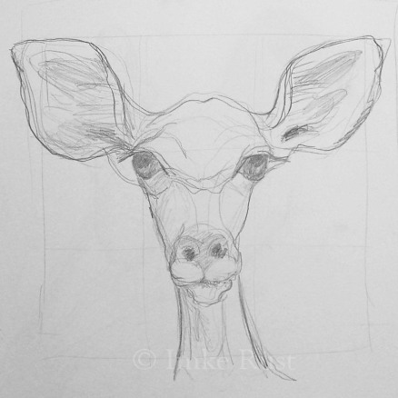 Preparation Sketch for the kudu painting