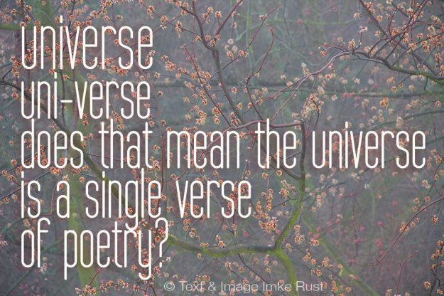 Universe (c)Imke Rust