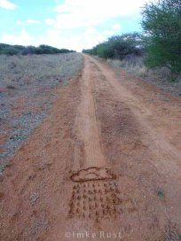 Drawing a rain cloud with a stick onto the ground on a dirt road © Imke Rust