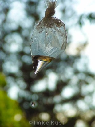 A drop is falling © Imke Rust