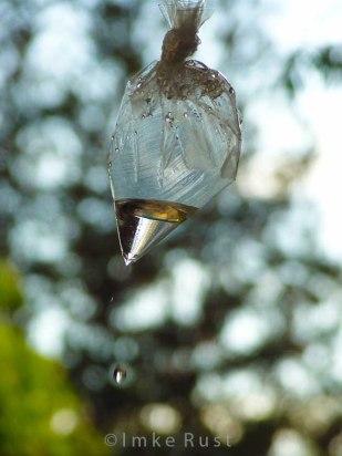 A drop is falling © Imke Rust