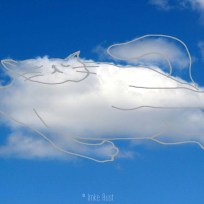 Cloud Sleepy Cat, Digitally manipulated photograph, © Imke Rust