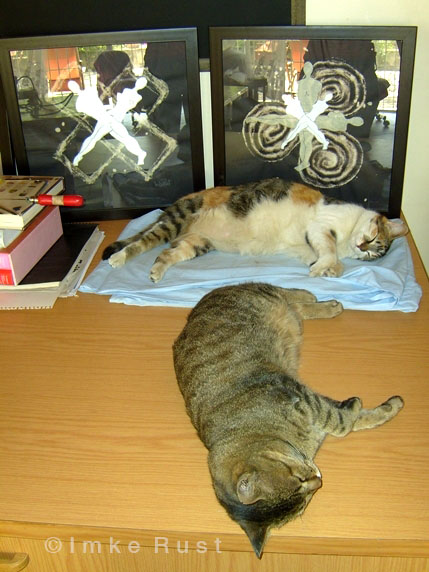 Clarissa and her buddy Willi (who has passed away) almost perfectly imitating the male-female crosses of my artworks.