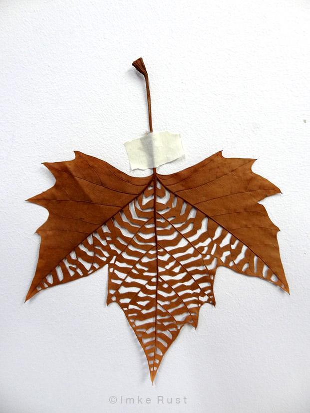 Maple leaf cut-out #3