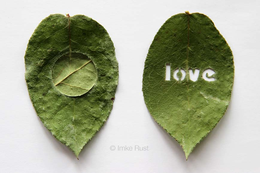 Rose Leaves Cut-Out (Circle and Love)