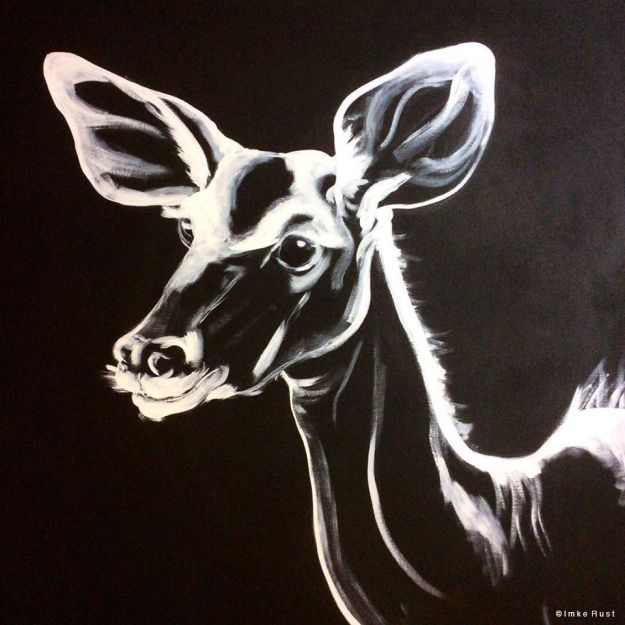 Kudu White on Black (Detail)