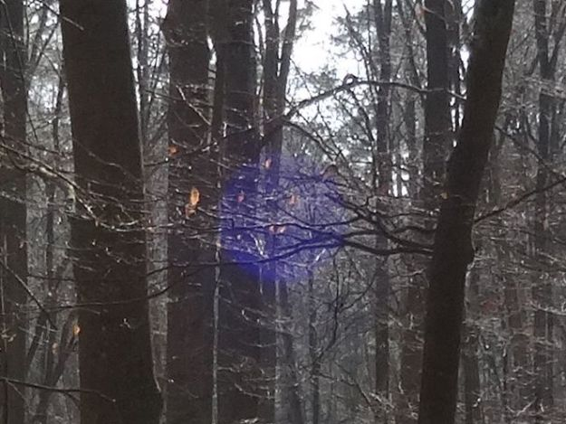 Blue Sphere 1 (Detail), carefully allowed in the branches between two trees in the forest, by Imke Rust