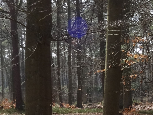 Blue Sphere 2, carefully allowed in the branches between two trees in the forest, by Imke Rust
