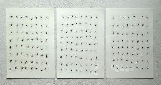 Eine kleine Nachtmusik. Mosquitoes and tape on paper. Each 29x21cm