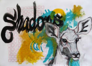 Shadows. Mixed Media 63x88cm