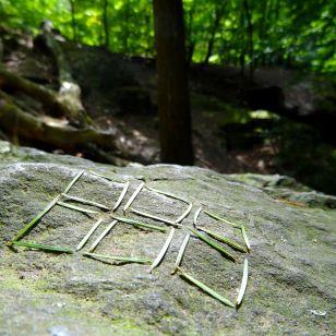 Pine Needle Squares © Imke Rust